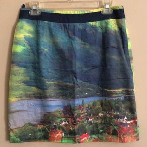 """Anthropologie """"Countryside"""" Print Skirt - Size 8"""